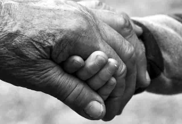 complementos alimenticios personas mayores